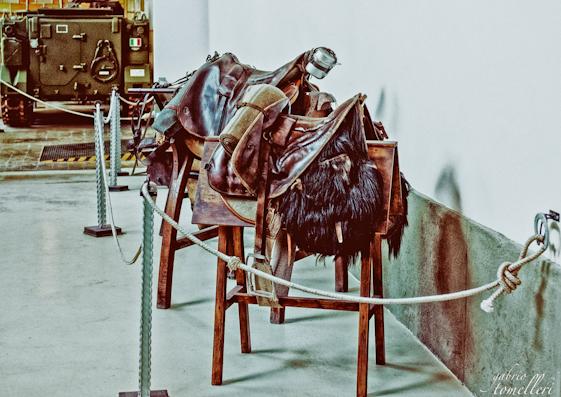 museo della cavalleria