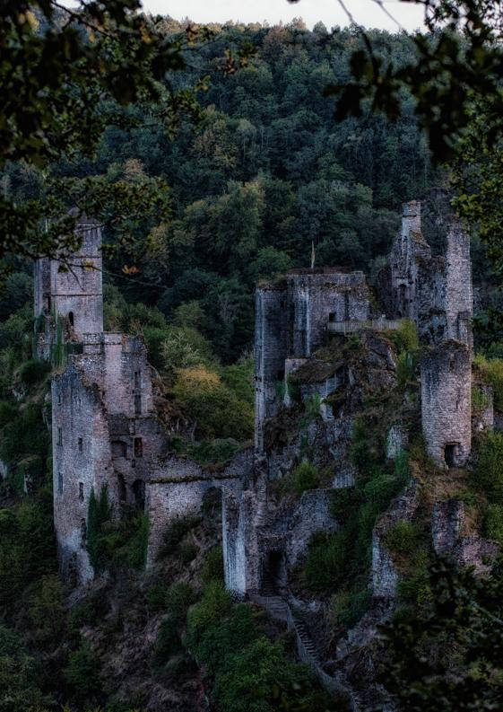 Tours de merle c 39 era un castello nel bosco for Case moderne nei boschi