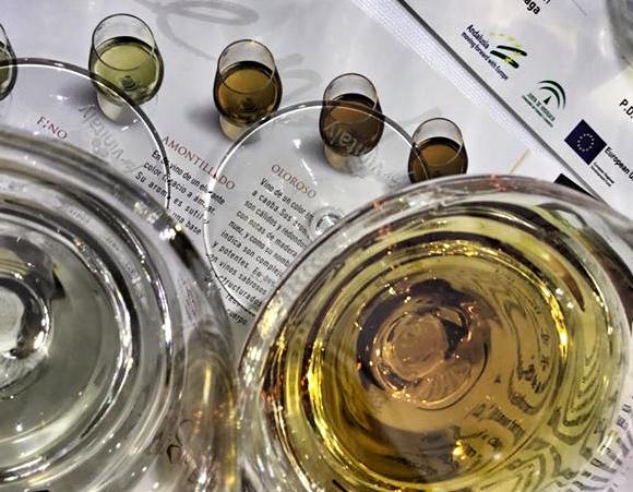 vini dell' andalusia