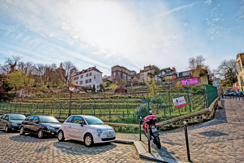 parigi sacro cuore-studiotomelleri-vigne di Montmatre