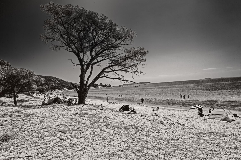 spiaggia di palombaggia -studiogabriotomelleri-4