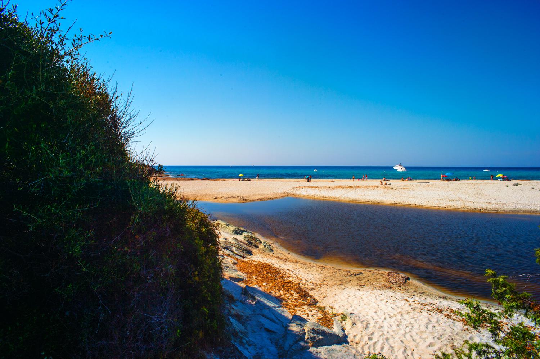 spiaggia di saleccia -studiogabriotomelleri-2