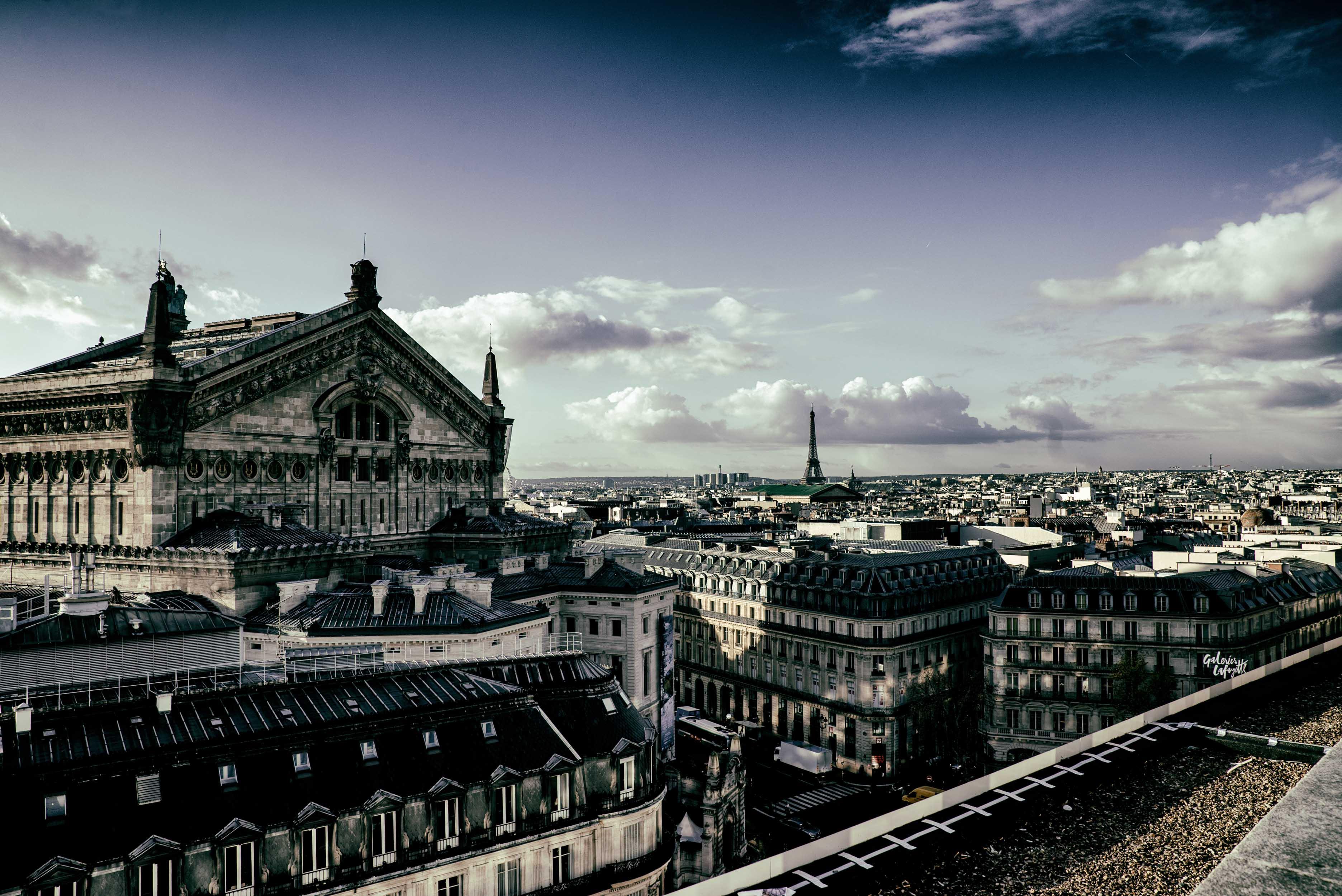 parigi- studio80gabriotomelleri_-13
