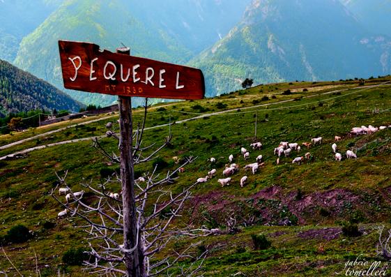 Pian dell' Alpe