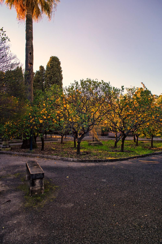 giardino mentone-studiogabriotomelleri-3