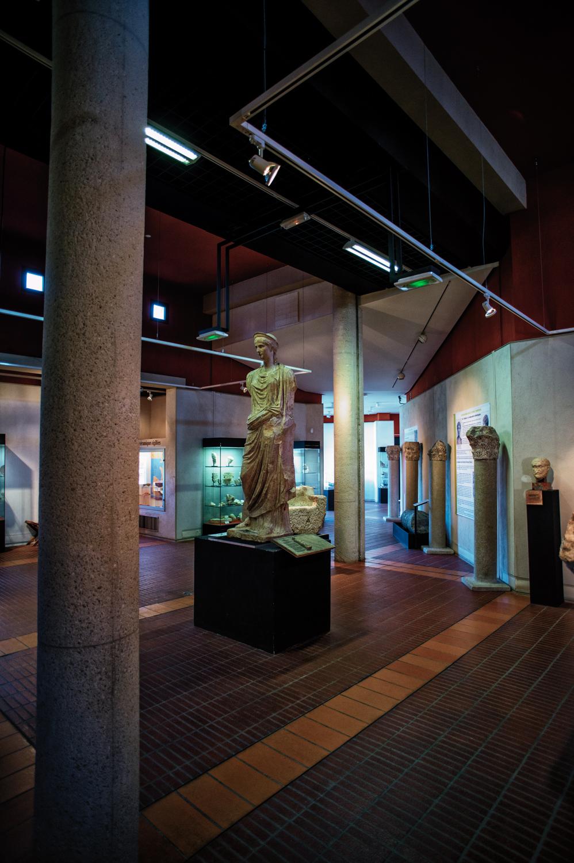 museo archeologia-studiogabriotomelleri-2