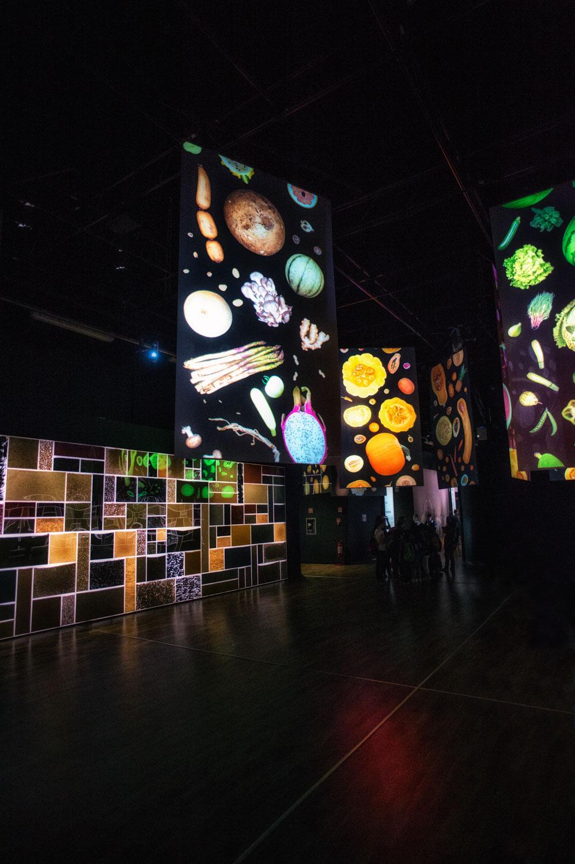 expo 2015-studiogabriotomelleri-padiglione zero